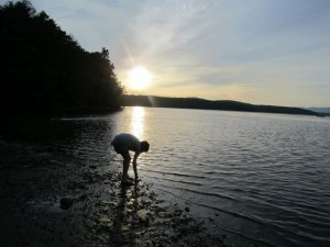 Orla collecting crabs in the Hudson as the sun sets